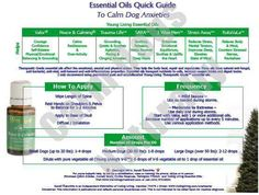 Essential Oils to Calm Dog Anxieties from https://howdoiusemyoils.wordpress.com/tag/peace-calming-essential-oil/