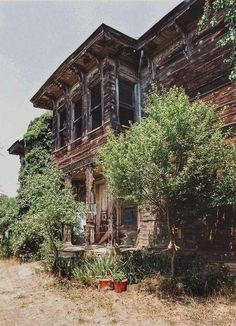 Building Structure, Natural Life, Historic Homes, Traditional House, Old Houses, Istanbul, Home And Garden, Skyline, Backyard