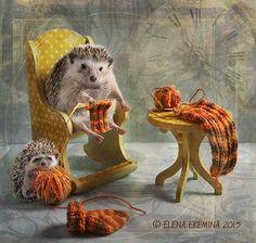 The Secret Life Of Hedgehogs By Elena Eremina