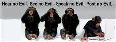 No evil