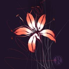 Passion Lily [strangeblooms, floralart, flowerpainting,lilypainting, digitalwatercolour, digitalwatercolor, digitaldrawing, floralillustration ]  ©️Ruth Rowland Lettering Artist