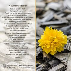 Father, Creator of all, thank you for summer! #prayer #summer #catholic