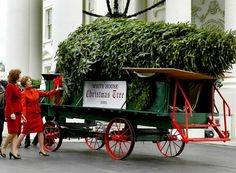 First Lady Laura Bush receives the official White House Christmas tree, an Fraser fir, at the North Portico of the White House in December White House Christmas Tree, Christmas Past, Christmas Is Coming, Vintage Christmas, Christmas Holidays, Christmas Decorations, Holiday Decor, Holiday Ideas, Christmas Tree Delivery