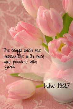 And he said, The things which are impossible with men are possible with God. Luke 18:27
