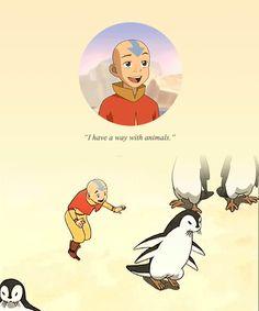 Hello, Zuko here. Avatar Aang, Avatar The Last Airbender, Avatar Animals, Zuko, Korra, Best Shows Ever, Fandoms, Orange, Tv