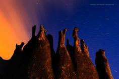 Reaching For The Sky by Marsel van Oosten, via 500px