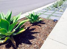 How to Landscape a Parking Strip Without Real Grass Sidewalk Landscaping, Landscaping Around House, Landscaping With Rocks, Modern Landscaping, Landscaping Plants, Front Yard Landscaping, Landscaping Ideas, Landscaping Software, Xeriscaping