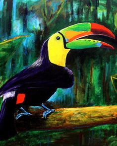Belize Toucan by Brontegallery