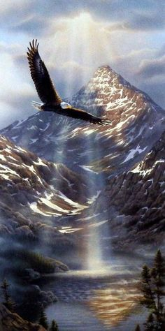 The sun beams through the clouds, highlighting this bald eagle, onto the river that makes its way through the mountains.