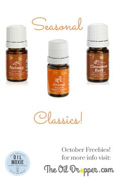Love the smell of this trio! Learn more here: http://www.theoildropper.com/cinnamon-orange-and-nutmeg/