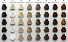 Ash brown with Scandinavian Blond or ash blond ombre