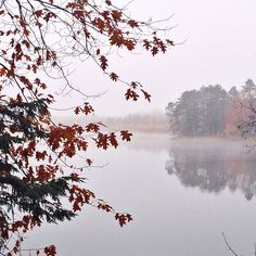 November 1st view across a foggy lake. @melissasovey on Instagram