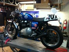 2005 Triumph Thruxton Cup Race bike for sale Triumph Motorcycles For Sale, Triumph Thruxton 900, Valve Adjustment, Bikes For Sale, Racing, Running, Auto Racing