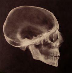 """Saatchi Online Artist matthew carey; Painting, """"skull 2"""" #art"""