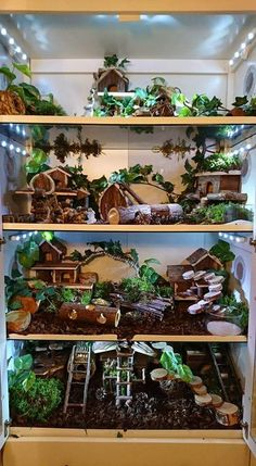Beautiful cage setup. It would need different bedding and larger toys for chinchillas plus some space between each level but it's a great idea.