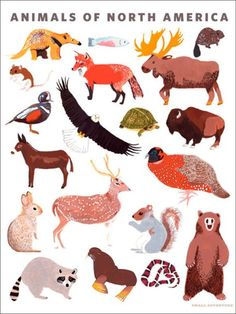 @rosenberryrooms is offering $20 OFF your purchase! Share the news and save!  Animals of North America Poster Wall Decal #rosenberryrooms