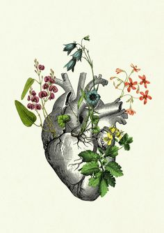 Flowers growing on an anatomical heart. A beautiful gift for a loved on or friend. Victorian Steampunk Collage of vintage Victorian engravings, illustrations and my own drawings on fancy German Hahnemühle deckle edged engraving paper. Please let me know if you need the print to face in the other direction. ★ Size of paper: DIN A4 (21 cm x 29,7 cm/ 8.2 x 11.7 inch), the image itself measures approx. 15 cm x 20 cm (5.9 x 7.9 inch) ★ Printed on genuine German 150g Hahnemühle engraving paper…