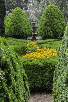 Criss-cross Garden by Brian Rojo