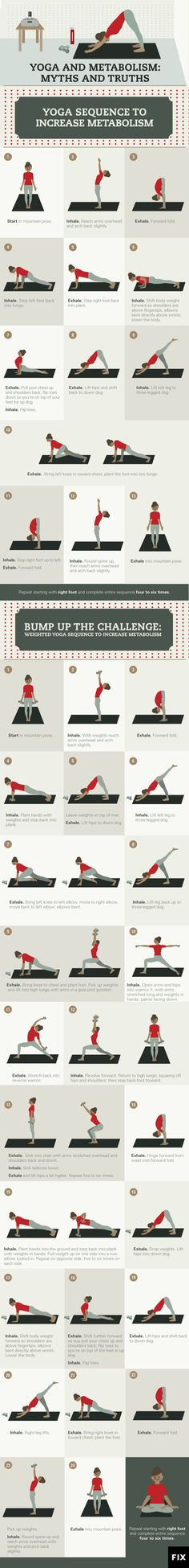 and Metabolism: Myths and Truths Find out which yoga poses will boost your metabolism throughout the day!Find out which yoga poses will boost your metabolism throughout the day! Fitness Del Yoga, Fitness Workouts, Health Fitness, Fitness Plan, Fitness Diet, Fitness Routines, Fitness Tracker, Iyengar Yoga, Ashtanga Yoga