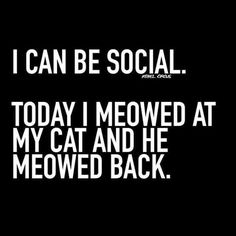 ''I can be social. Today I meowed at my cat, and he meowed back.'' source: Rebel Circus