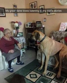 Funny Pictures of The Day - 45 photos - Morably