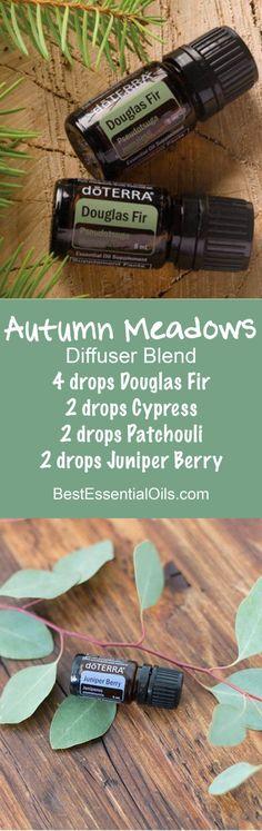 Autumn Meadows doTERRA Diffuser Blend