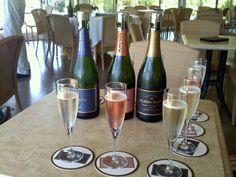 Visit Mumm Napa to taste some of the best sparkling wine made in North America - Napa Valley Wine Region