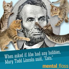 President Lincoln liked Cats - 54 Fantastic Facts for National Trivia Day | Mental Floss