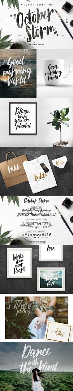 Modern brush font - October Storm by Skyla Design on @creativemarket