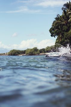 Photo Diary: Maui | Free People Blog #freepeople