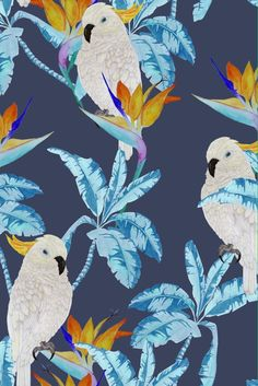 Fantastic new wallpaper designs by the Graduate Collection now available. Parrot