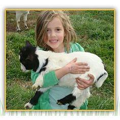Petting Farm Ijamsville, MD #Kids #Events