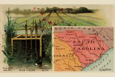 South Carolina, by Arbuckle Brothers