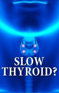 Dr. Oz explained how to tell if you could be suffering from a slow thyroid and then shared 4 ingredients you need to include in your diet that will help with your symptoms. http://www.recapo.com/dr-oz/dr-oz-advice/dr-oz-suffering-slow-thyroid-questionnaire-4-key-ingredients/