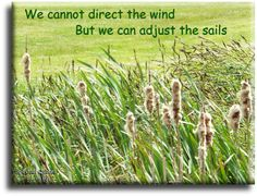"""""""We cannot direct the wind, but we can adjust the sails"""" Spiritual Quotes To Live By"""