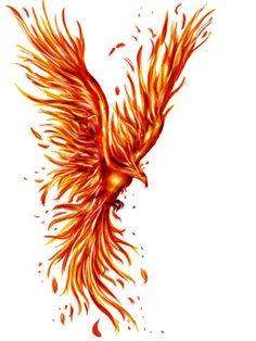 phoenix tattoo - Google претрага