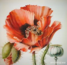 Маки. Диптих China Painting, Silk Painting, Poppy Decor, Glass Painting Designs, Watercolor Rose, Flower Art, Photo Art, Beautiful Flowers, Poppies