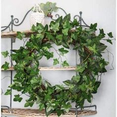 Natural looking Wild Ivy and Moss Wreath. Faux Flowers []perfect for a table centrepiece or Door Hanging.