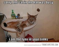 Sorry, the Cat in the Hat was busy…