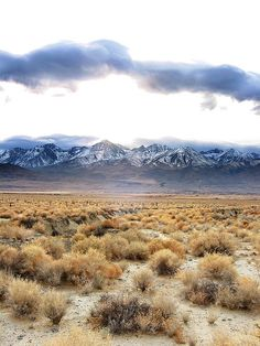Owens Valley and Sierras / cmrowell