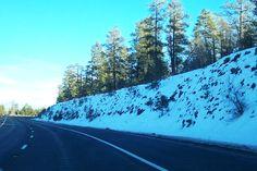 Lots of snow near Flagstaff, AZ