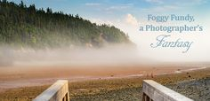 A photo of fog rolling in on the beach at low tide in the Bay of Fundy, New Brunswick.