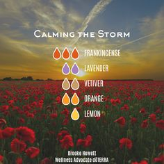 Calming the Storm — Essential Oil Diffuser Blend Essential Oil Scents, Essential Oil Diffuser Blends, Essential Oil Uses, Doterra Essential Oils, Doterra Diffuser, Lavender Oil Benefits, Calming The Storm, Aromatherapy Oils, Parfum Spray