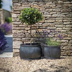 Set of Two Rustic Round Shallow Vence Fluted Zinc Planters - The Farthing - 1 Zinc Planters, Vintage Planters, Garden Planters, Eclectic Vases, Industrial Style Furniture, Villa, Raised Garden Beds, Raised Beds, Garden Spaces