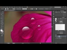 How to Draw a Water Drop in Adobe Illustrator - YouTube