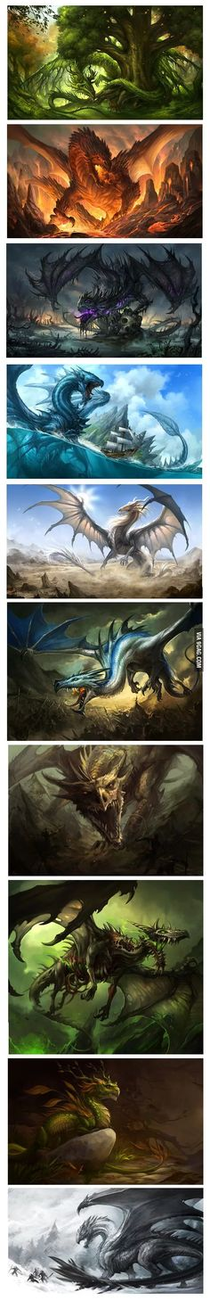 My favorite fantasy animals are dragons, I admire art work like this that shows the different kinds of dragons there are! Types Of Dragons, Cool Dragons, Mythological Creatures, Dragon Art, Dragon Blue, Dragon Pics, Magical Creatures, Fantasy Artwork, Creature Design