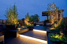 Sculptural Roof Deck contemporary landscape