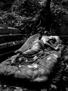 Sleeping Angel in London's Highgate Cemetry Cemetery Monuments, Cemetery Statues, Cemetery Art, Angel Statues, Highgate Cemetery London, Statue Ange, Old Cemeteries, Graveyards, Cemetery Angels