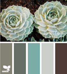 Teal, gray and chocolates. : this is a great way to,help you choose a color palate for at least the living room and dining room. Momma | best stuff