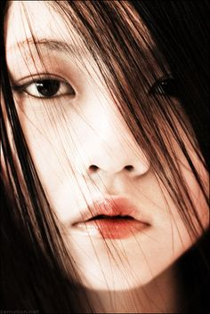 Zhang Jingna Photography & Travel Blog   Singapore   Art   Fashion: Equipment and Where The Money Comes From